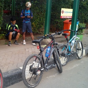 Gowes_CFD